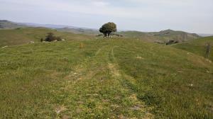 Top of Prairie Ridge Trail