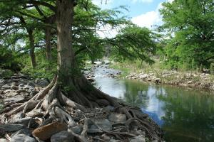Another View Of Pedernales River