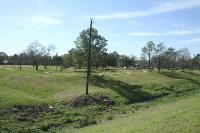 Wedgewood Village Park