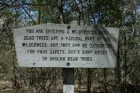 Dead Tree Warning