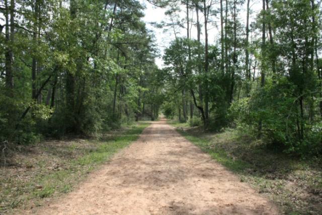 Long, Straight Trails
