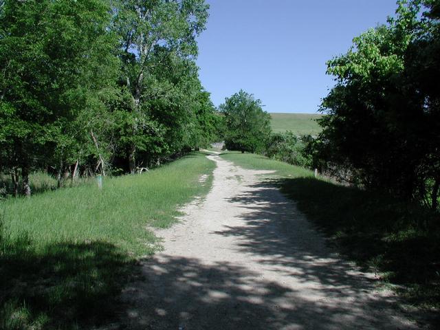 Near the trailhead