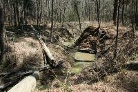 Little Lake Creek