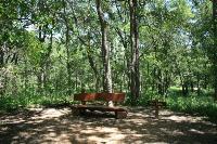 Scenic Rest Areas