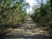 The well maintained trail circles around Red Bud Isle.