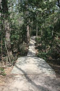 Wooden Bridges And Walkways