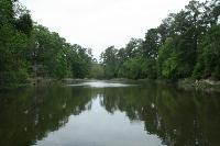 Bedias Lake