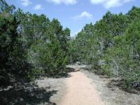 There are occasional breaks in the tree cover along the trail, but heavy cover predominates.