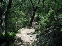 Immediately following the paved trail the path leads down a rocky slope to the creek bed.