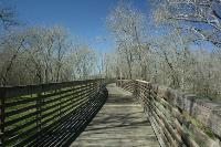 Long Wooden Bridge Over Buffalo Bayou
