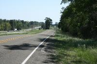 Road Walk (I-45 Service Road)