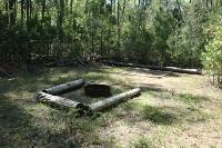 Magnolia Primitive Camp
