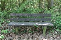 Dual-Purpose Benches