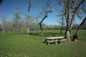 Beautiful Picnic And Play Areas