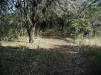 The trails near the trailhead are well maintained and easy enough for beginners.