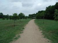 Much of the park consists of open fields of grass.  Here the trail skirts around the grove of trees on right and the storm water catch basin to the left.