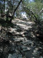 The Hill Trail includes some steep ascents, but nothing that should require using your hands for support.