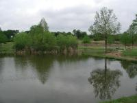 The highlight of the hike is the picturesque pond at the park's center, which includes a small island.