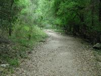 Although the walls of the canyon are steep, the trail itself follows the gentler creek bed.