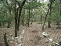 The Gaines Creek Park trail is often marked by a row of limestone along the trail's edge.