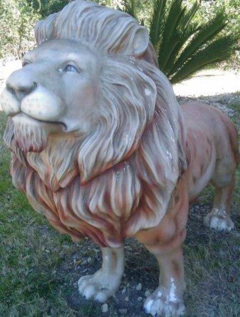 Oops, Lions too