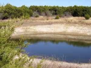 prairie pond