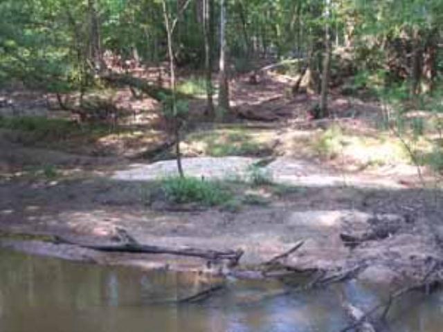 Sandbar on Turkey Creek