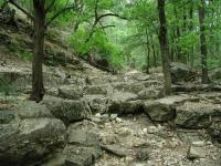 The trail crosses the creek that cuts the valley a number of times.