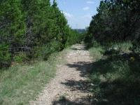 The trail near the apex of the park is wider than elsewhere and straight as an arrow, just like the high-tension power lines overhead.