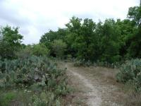 The trail consists of a mix of wooded segments and open prairie.