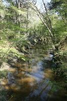 San Jacinto River