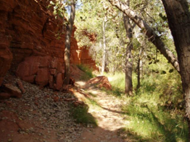 Juniper trail - River Side