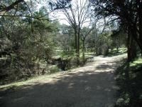 Blunn Creek Greenbelt is a popular spot for walks through the neighborhood.