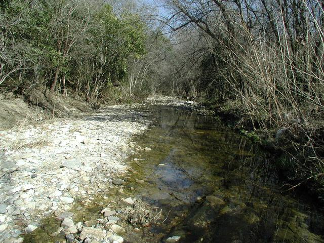 Bouldin creek greenbelt