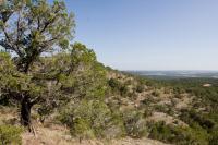 Vista Knoll Trail