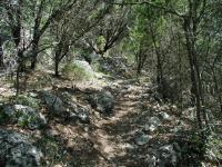 The Vista Knoll portion of the trail tends to be rockier and a bit more challenging.