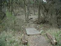 Trails are generally well maintained.  Here the route uphill even includes switchbacks to help control erosion.