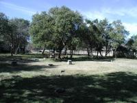 A wide view of Jolly Cemetery, showing most of the plots.