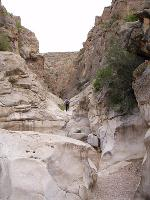 Canyon shot