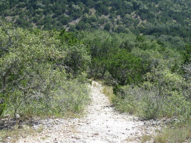 Trail heading down 4a