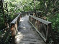 At the end of the trail is this surprising observation deck that sits on the edge of a steep drop into the canyon.