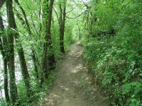 The trail follows along the bank of the river for about a mile.