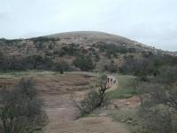 Enchanted Rock, as seen from the observation platform near the Summit Trail trailhead.