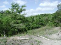 The trails of McKinney Roughs undulate up and down hillsides.