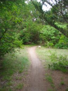 Boulder Park Trail Detail