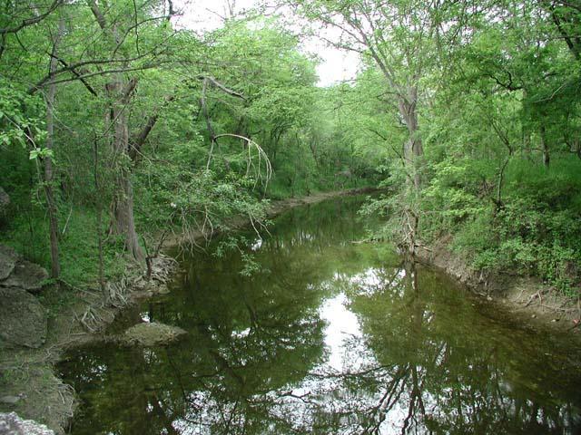 Onion Creek