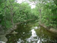 Onion Creek