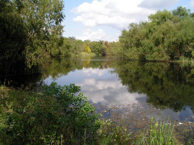 Elm Lake