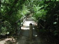 The bridges along the trail are safe, though one is missing some railing.