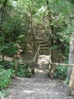 The trails at Mayfield are well maintained and several bridges provide easy stream traversal.